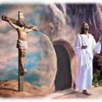 Catholic Action – April Update